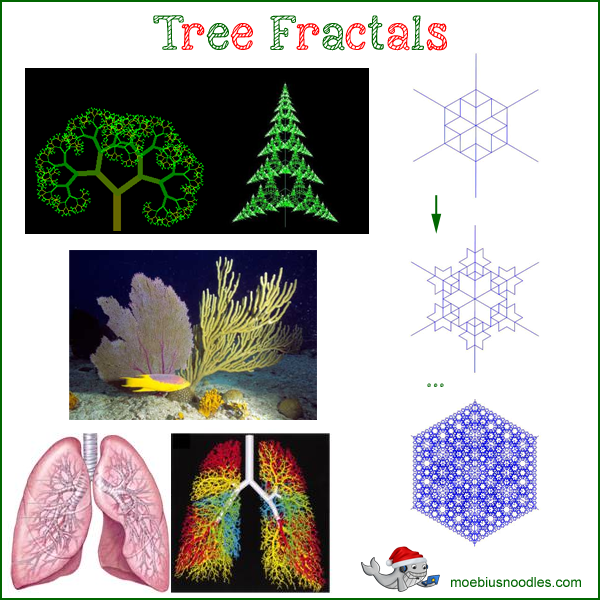 Tree Fractals Snowflakes