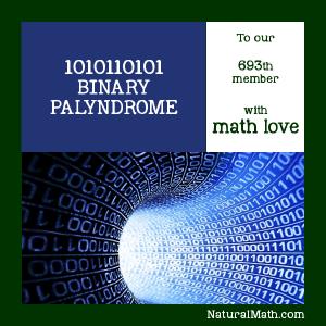 693 Binary Palyndromic
